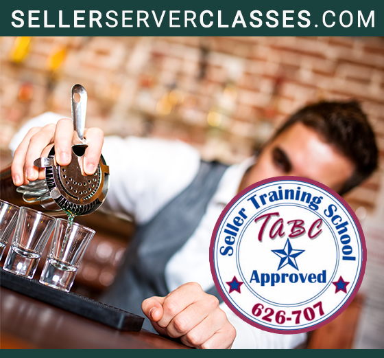 Visit Seller Server Classes